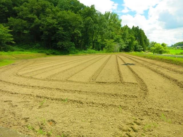 農地を宅地転用した土地